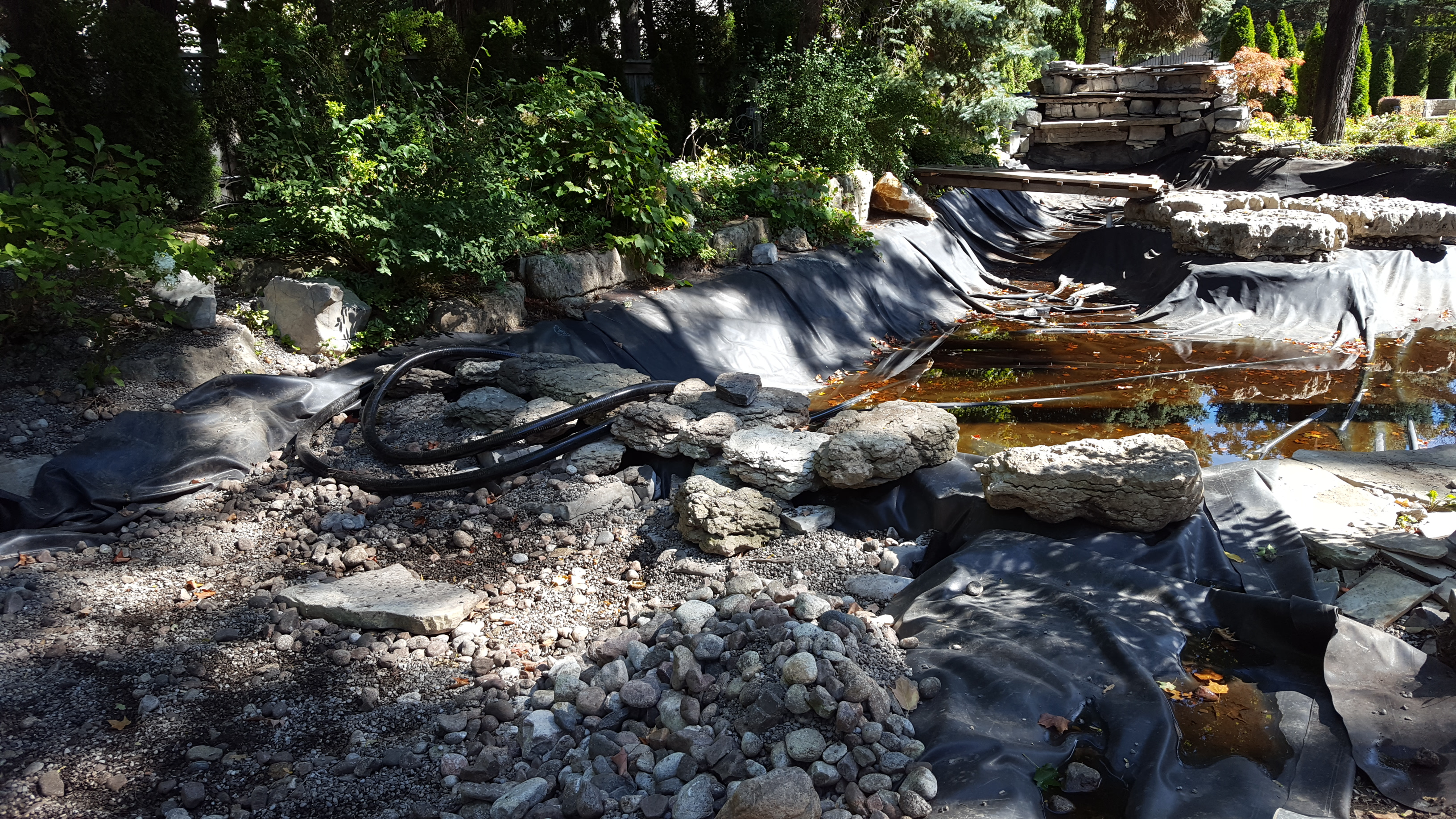 Bog pond - upper wall