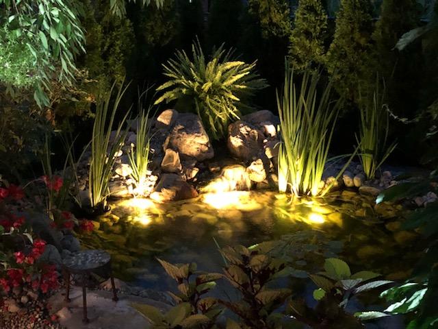 Pond lights