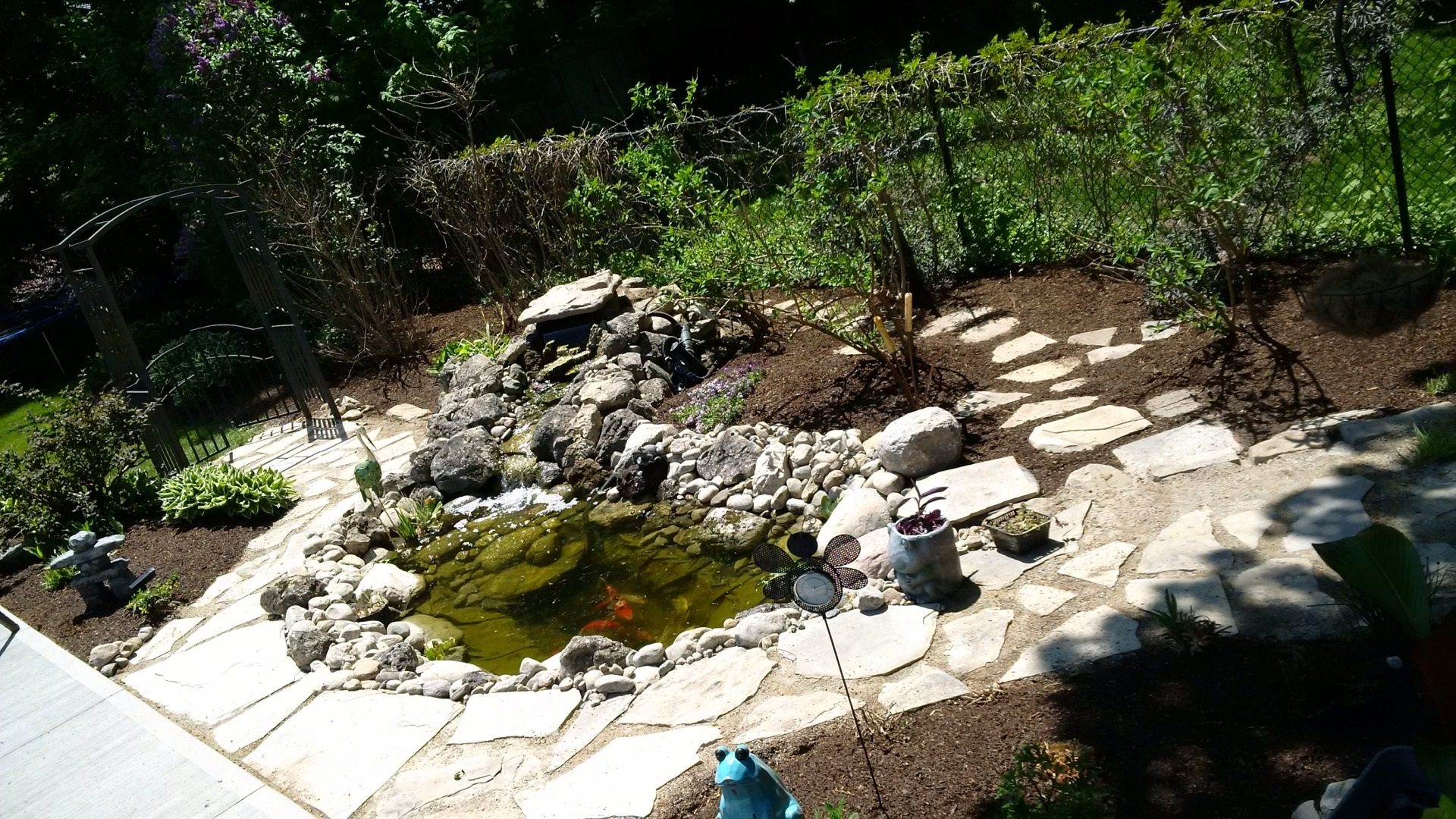 Klemmer pond completed
