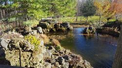 Beautiful Escarpment moss rocks