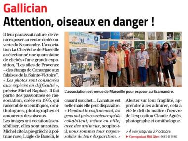 """L'exposition photo dans le """"Midi Libre"""""""