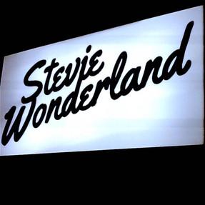 Stevie Wonderland presents Rare Pleasures II