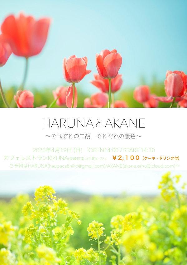 HARUNAとAKANE ①それぞれの二胡.jpg