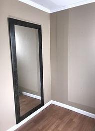 Hidden mirror door