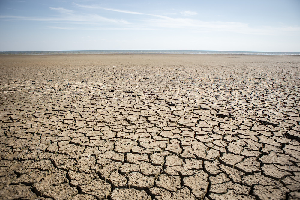 The Drought Project