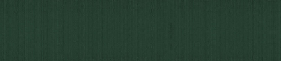 Strip Fabric Background Winter Green.jpg