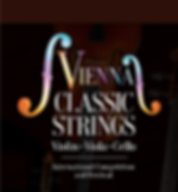 Vienna Classic Strings.png
