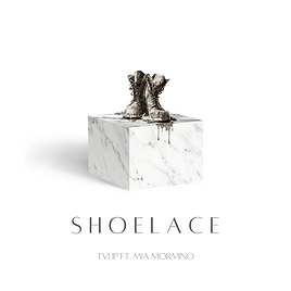 Shoelace Cover Art.png