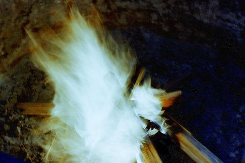 In Flames Print