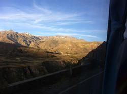 Utsikt från bussen