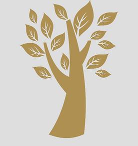 Transparent KC Tree.png