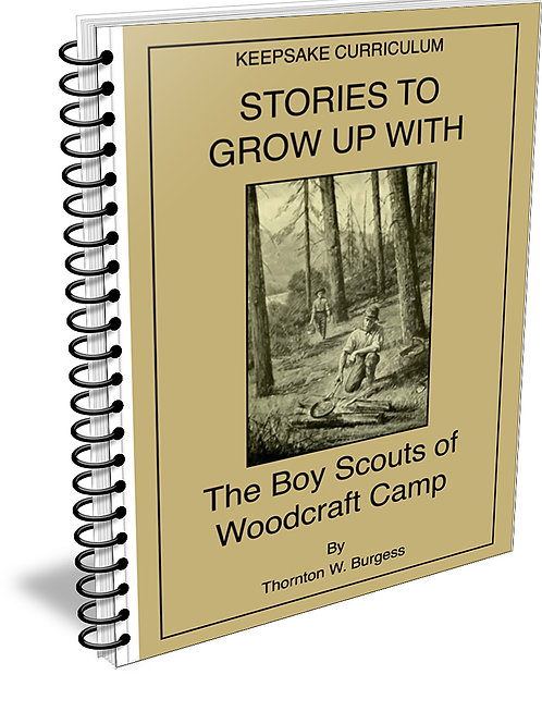 Boy Scouts of Woodcraft Camp ebook