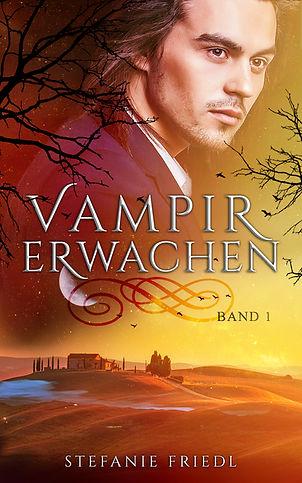 vampirerwachenebookb.jpg