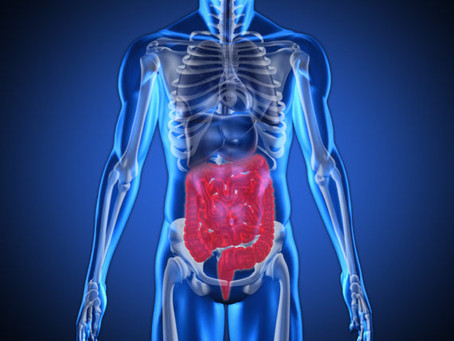 What is the cause of IBS?