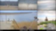 Screen Shot 2020-03-30 at 1.21.02 PM.png