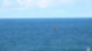 Screen Shot 2020-03-25 at 1.08.06 PM.png