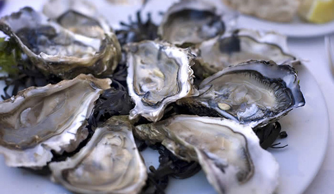 Ode To Oysters