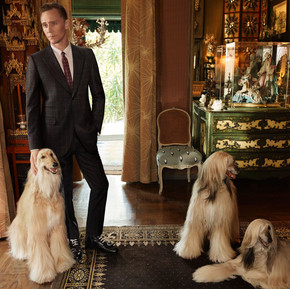 Gucci 早春度假系列全新廣告 Tom Hiddleston/ Gucci Cruise 2017 Collection with Tom Hiddleston