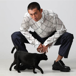 數位吸貓 Twitter的貓貓點擊盃你玩了嗎?/ Click it, POPCAT is trending and your cat is watching