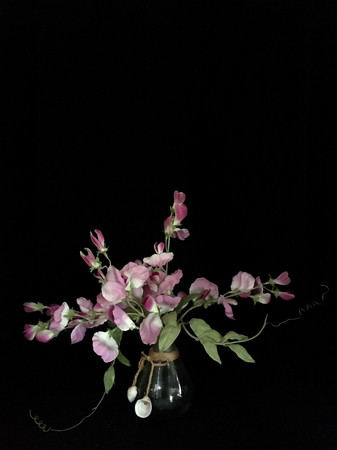 Sweet Peas With Two Shells