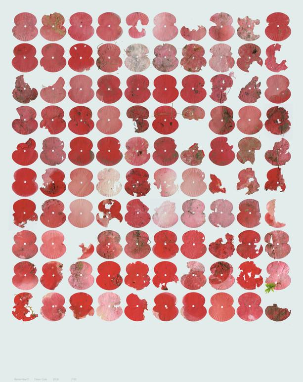 100 Poppies