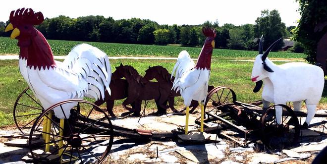 Aug 7 (1): Tin Chickens parading into Springfield, Illinois