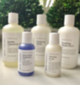 skintheory products.jpg