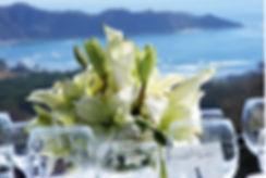 desination wedding costa rica wedding venue Tierra Magnifica