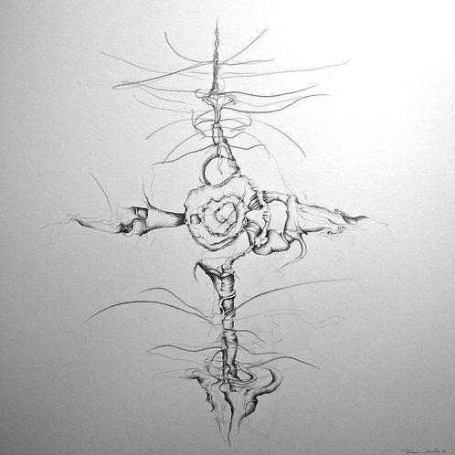 Transference II ~ Lang/Shankar