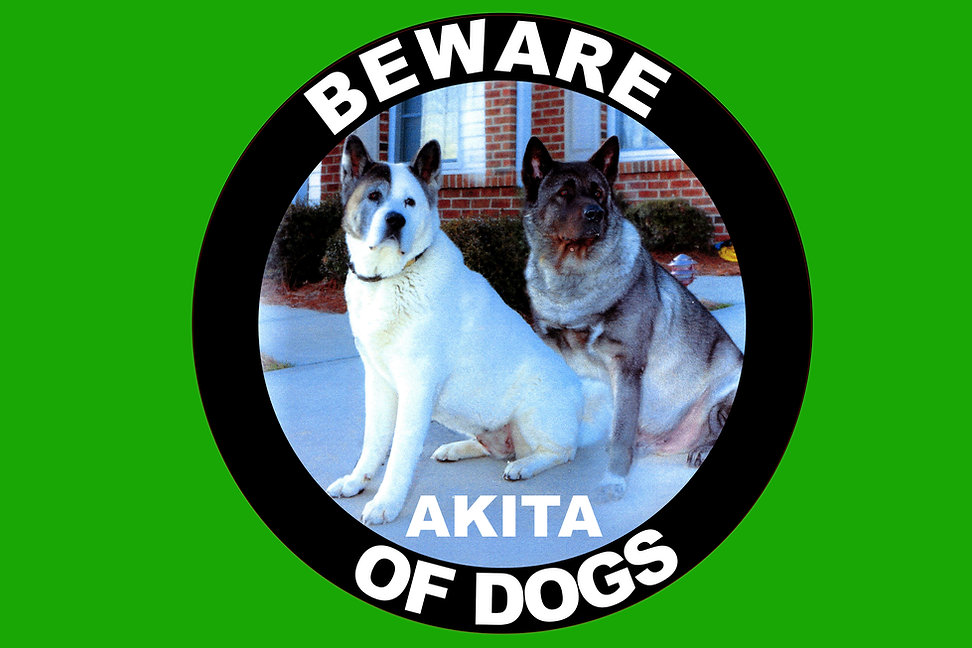 Beware-Of-Dogs-Sign-Green.jpg