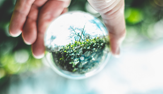 environmental กับการจัดการอย่างยั่งยืน