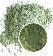 #17 - Moss Green