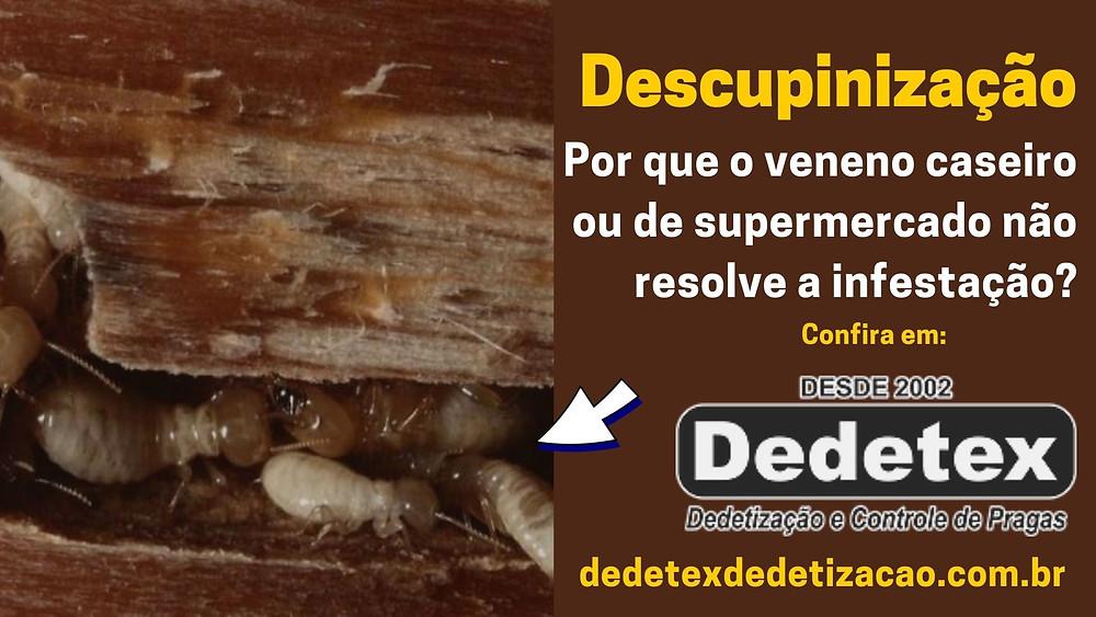 Descupinização Recife PE somos empresa de dedetização