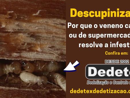 Descupinização Recife PE e interior: por que o veneno não resolve a infestação?