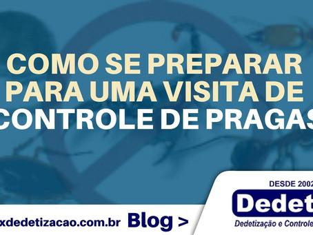 Como se preparar para uma visita de controle de pragas em Recife e interior de PE