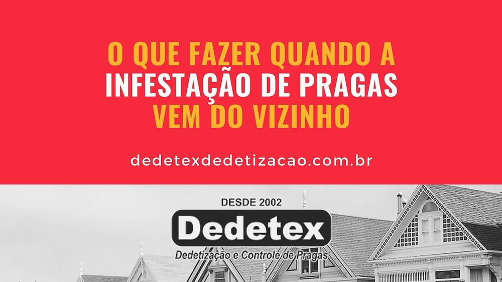 Dedetização em Recife e Interior - PE