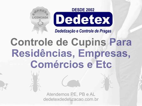 Controle de Cupins Para Residências, Empresas, Comércios e Etc