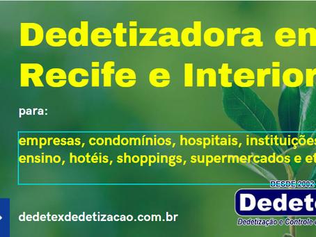 Dedetizadora em Recife e Interior -  4 ações para o controle de pragas