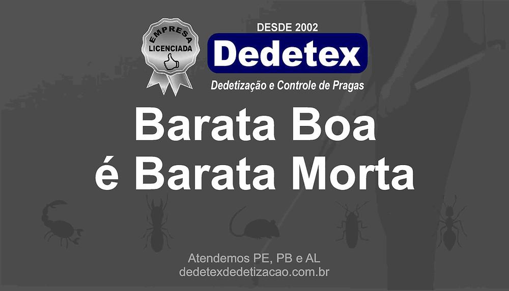 Empresa de Dedetização em Recife e interiorde PE
