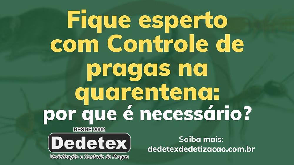 https://www.dedetexdedetizacao.com.br/post/fique-esperto-com-controle-de-pragas-na-quarentena-por-que-e-necessario