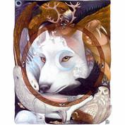Northern Dreamtime card design