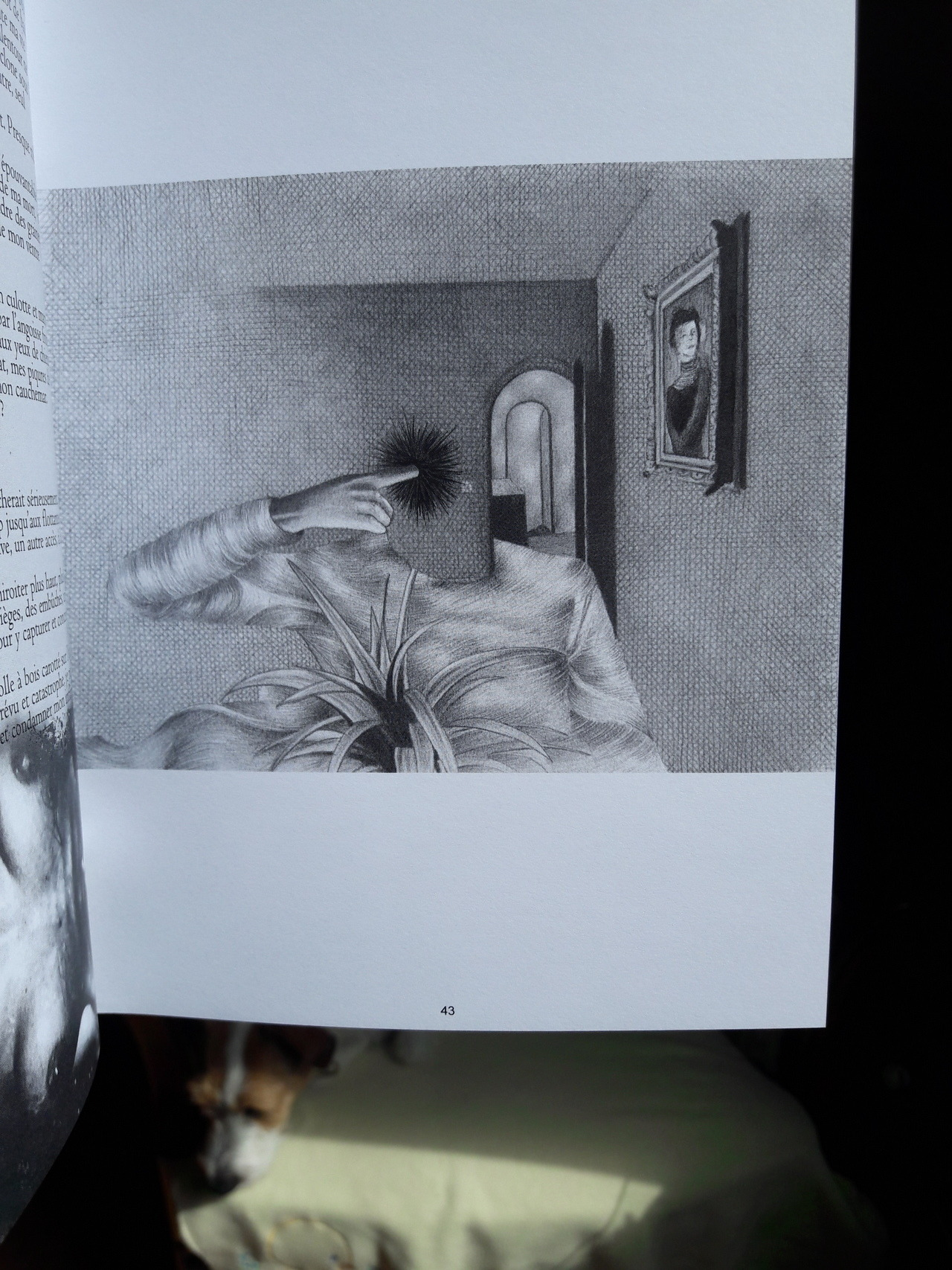 Chambre Pâle #5