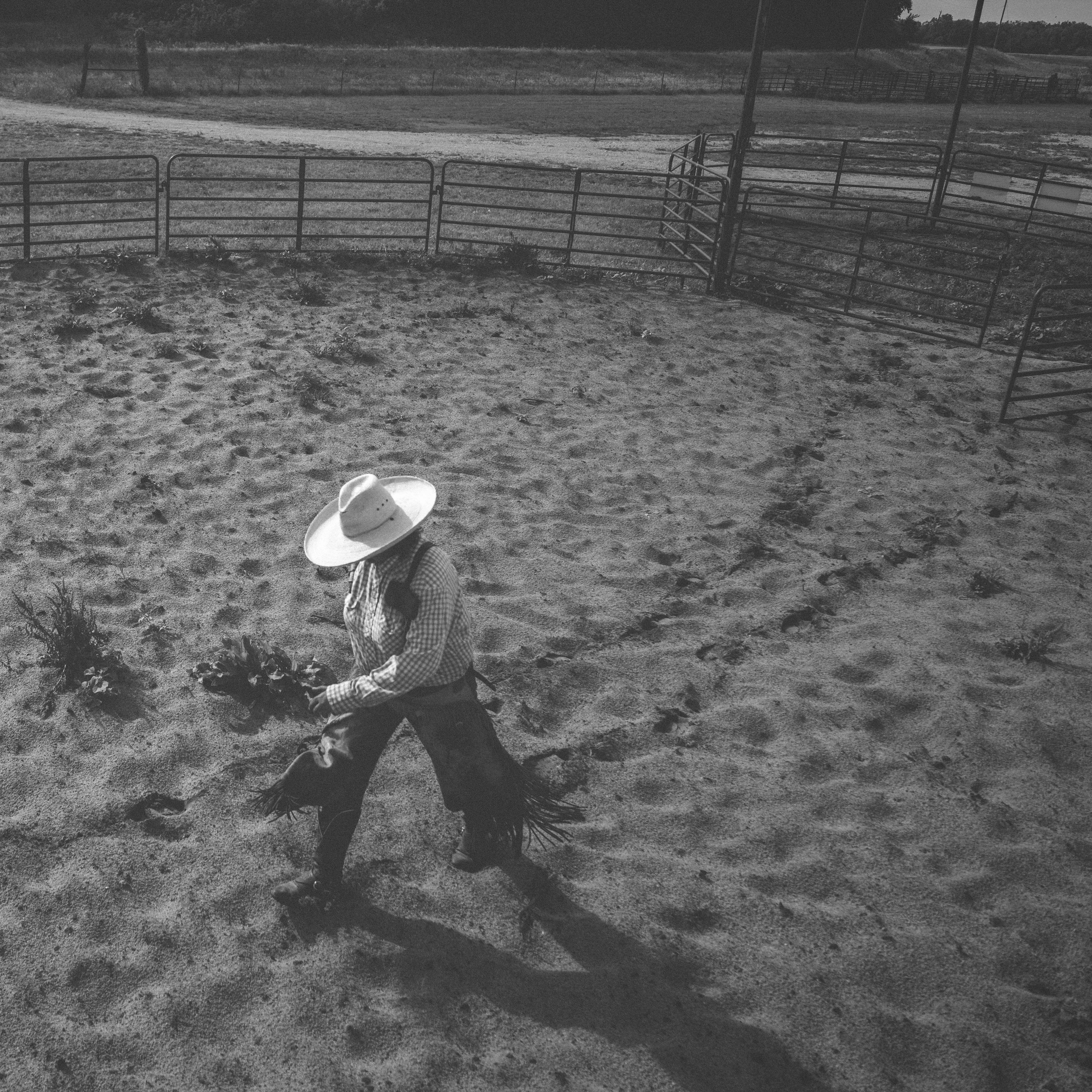 CattleDrive_13