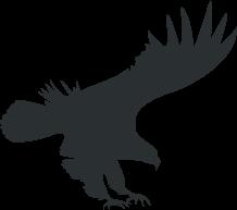 eagle-logo-grey.png