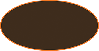 Oval for logo no gradient.png