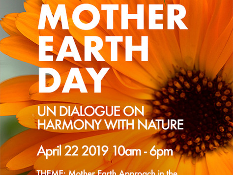 UN Harmony with Nature - Ninth Interactive Dialogue, NYC 22 April 2019