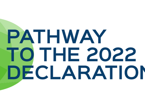 """Launch of the """"Pathway to the 2022 Declaration"""": a blog by jurists for diplomats."""