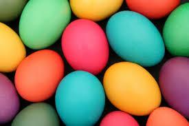 CAMELLIA ESTATE Perfect Egg