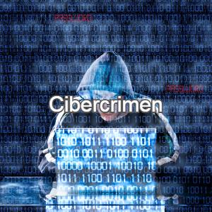 05cibercrimen
