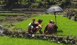 עם חברה במשתלת האורז שלה